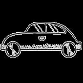 Choix du véhicule